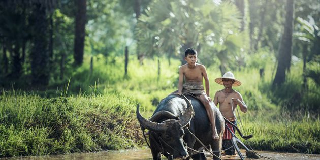 home base asien kambodscha