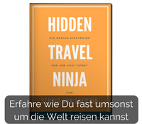 Hidden Travel Ninja