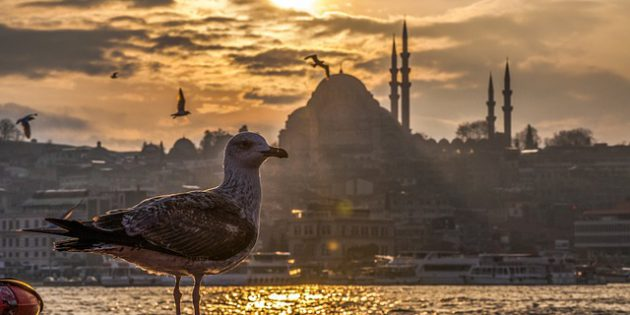 istanbul groesste stadt europas